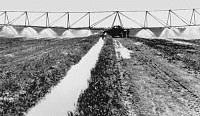 Подольская поступь земледельцев